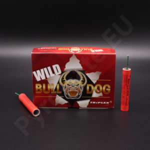 FireCracker Wild Bull Dog